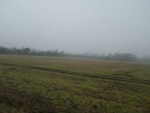 Gülle auf den Feldern