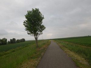 alte Bahnstrecke über die Alb