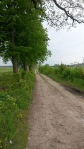 sandig, 14km